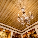 Snake Skin Ceiling Interior Design